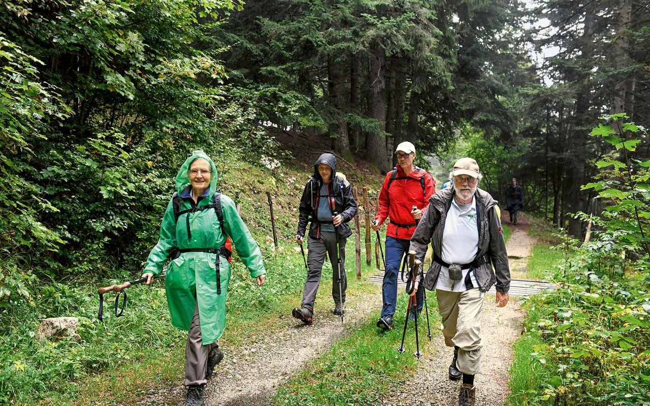 Alpena frauen suchen männer craigslist